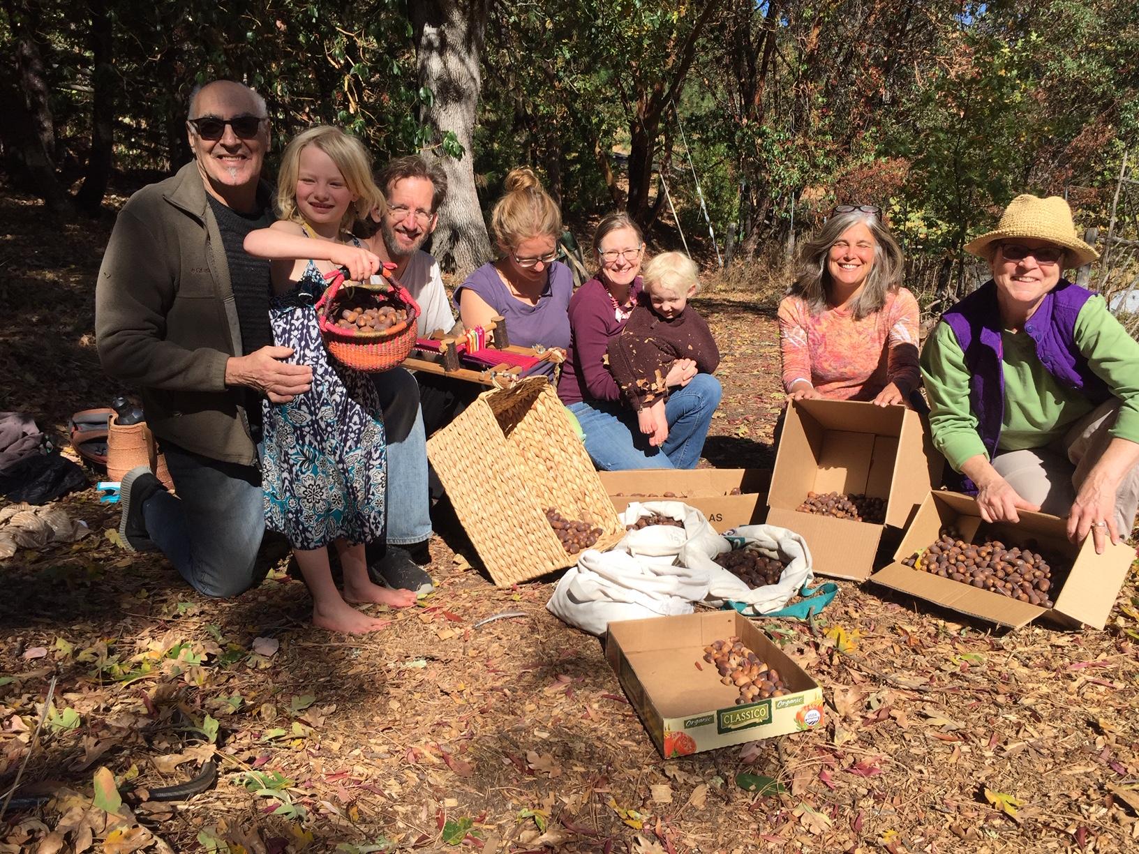 Gathering Acorns - A Community Event