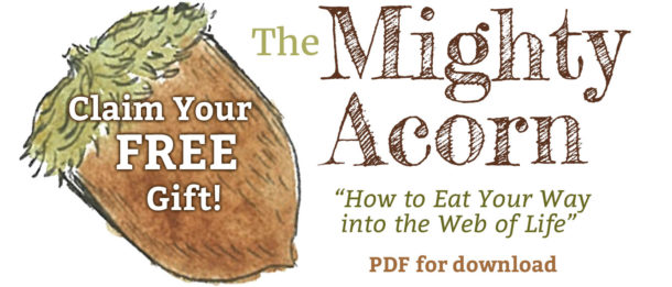 The Mighty Acorn - FREE Gift